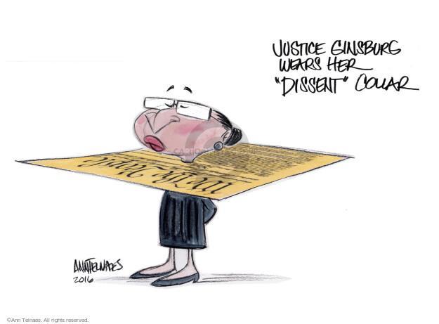 Cartoonist Ann Telnaes  Ann Telnaes' Editorial Cartoons 2016-11-09 branch of government
