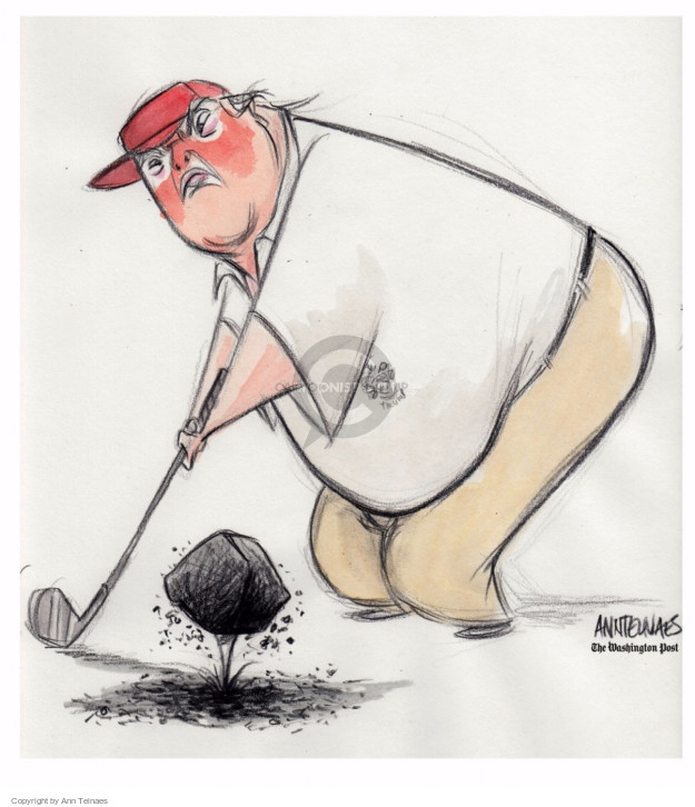 Ann Telnaes  Ann Telnaes' Editorial Cartoons 2017-03-28 presidential