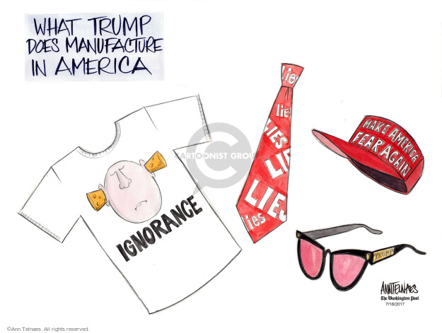 Cartoonist Ann Telnaes  Ann Telnaes' Editorial Cartoons 2017-07-18 political credibility