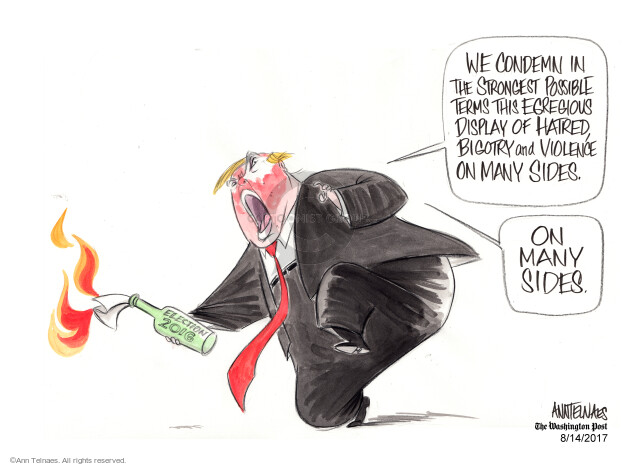 Ann Telnaes  Ann Telnaes' Editorial Cartoons 2017-08-14 many
