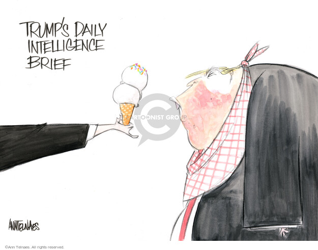 Ann Telnaes  Ann Telnaes' Editorial Cartoons 2017-12-14 intelligence