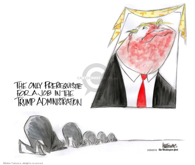 Cartoonist Ann Telnaes  Ann Telnaes' Editorial Cartoons 2018-02-26 Donald