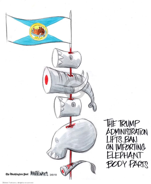 Cartoonist Ann Telnaes  Ann Telnaes' Editorial Cartoons 2018-03-06 Donald