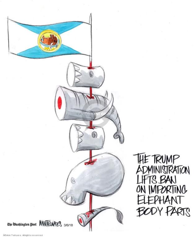 Ann Telnaes  Ann Telnaes' Editorial Cartoons 2018-03-06 import