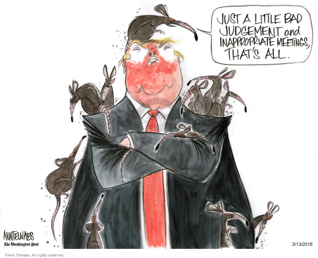 Ann Telnaes  Ann Telnaes' Editorial Cartoons 2018-03-13 presidential administration