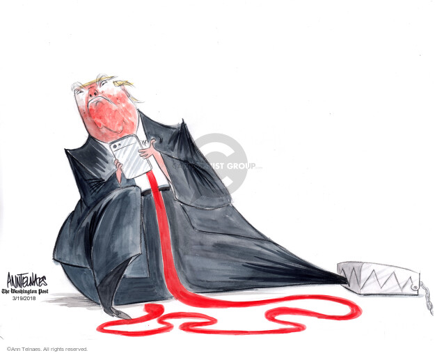Ann Telnaes  Ann Telnaes' Editorial Cartoons 2018-03-19 connection
