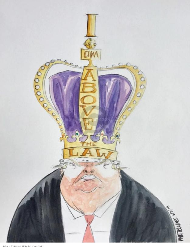 Ann Telnaes  Ann Telnaes' Editorial Cartoons 2018-06-03 presidential authority