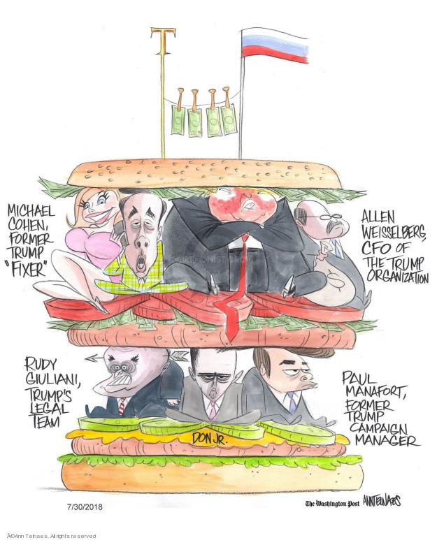 Ann Telnaes  Ann Telnaes' Editorial Cartoons 2018-07-30 lawyer