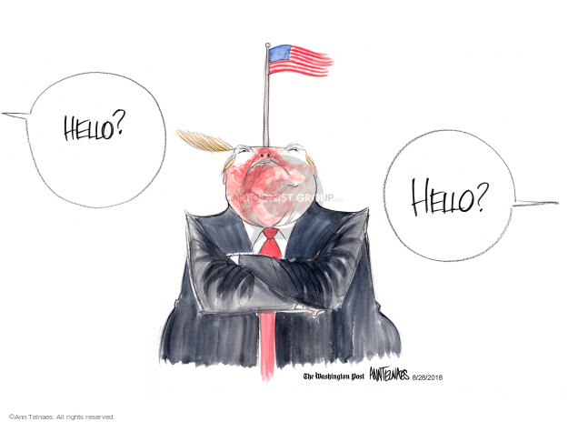 Ann Telnaes  Ann Telnaes' Editorial Cartoons 2018-08-28 death