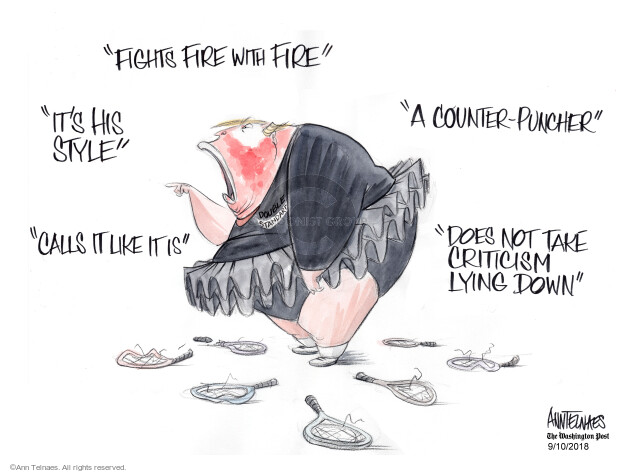 Ann Telnaes  Ann Telnaes' Editorial Cartoons 2018-09-10 style