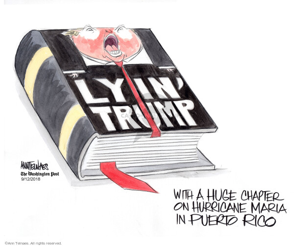 Ann Telnaes  Ann Telnaes' Editorial Cartoons 2018-09-12 disaster