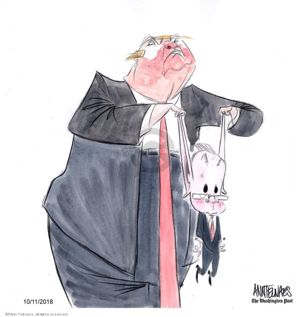 Cartoonist Ann Telnaes  Ann Telnaes' Editorial Cartoons 2018-10-11 Donald Trump Lawyers