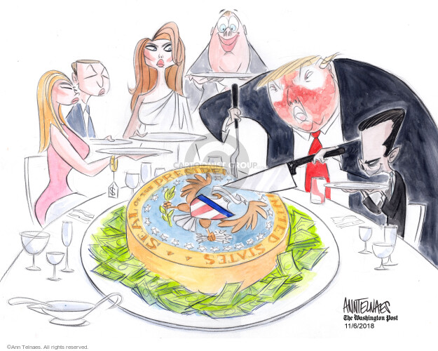 Ann Telnaes  Ann Telnaes' Editorial Cartoons 2018-11-06 Jared