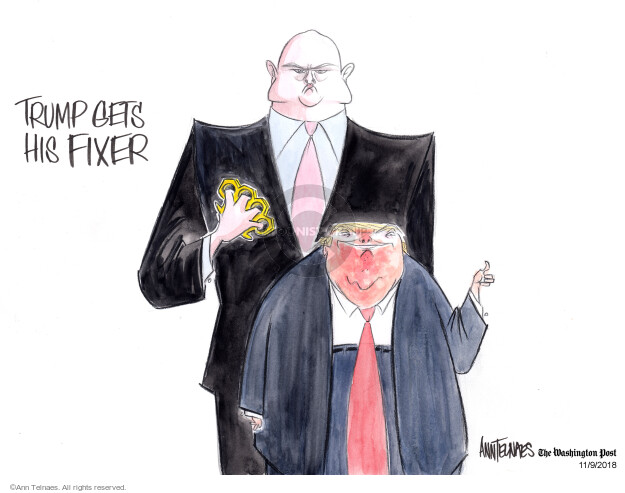 Ann Telnaes  Ann Telnaes' Editorial Cartoons 2018-11-09 Justice Department