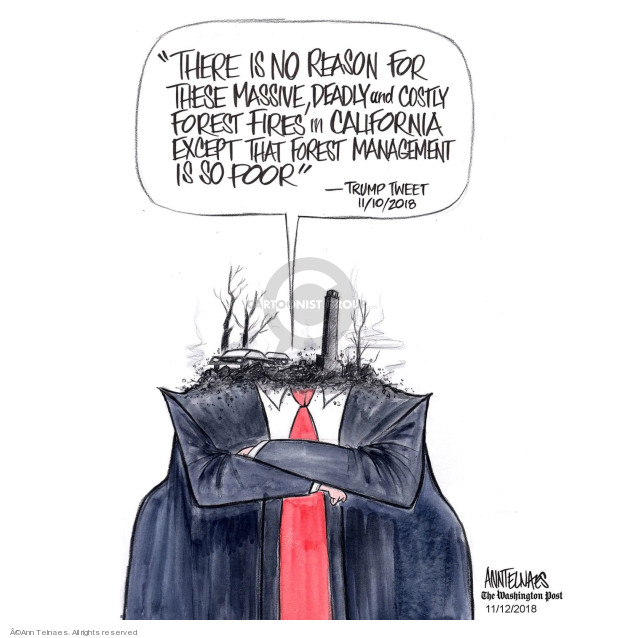 Ann Telnaes  Ann Telnaes' Editorial Cartoons 2018-11-12 management