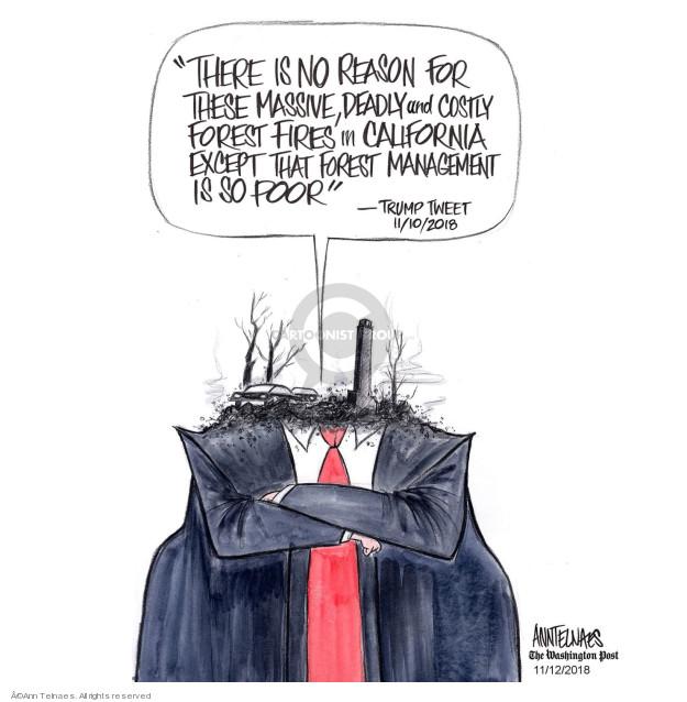 Ann Telnaes  Ann Telnaes' Editorial Cartoons 2018-11-12 disaster
