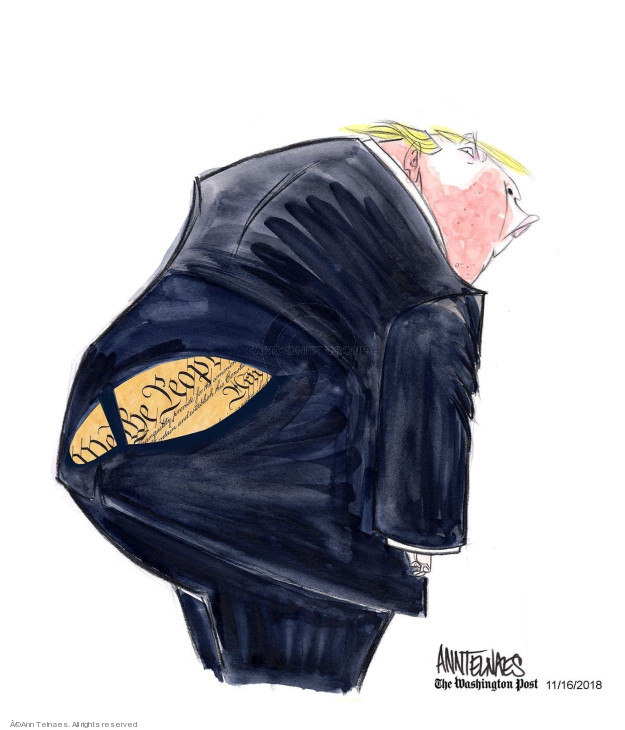 Cartoonist Ann Telnaes  Ann Telnaes' Editorial Cartoons 2018-11-16 Constitution
