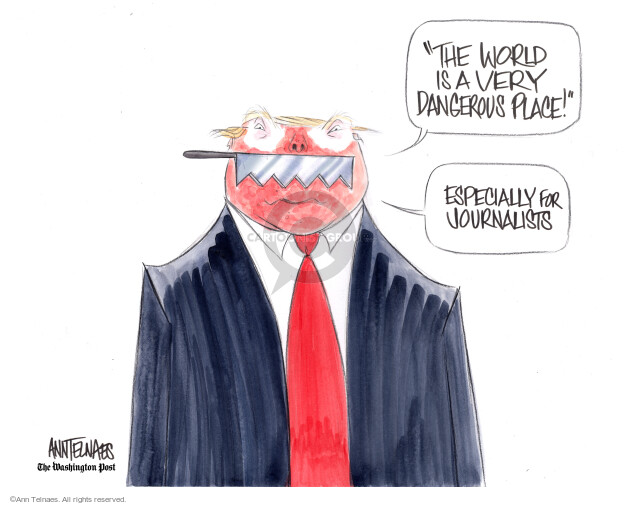 Ann Telnaes  Ann Telnaes' Editorial Cartoons 2018-11-20 journalism