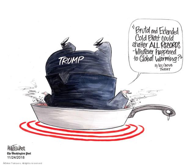 Cartoonist Ann Telnaes  Ann Telnaes' Editorial Cartoons 2018-11-24 environmental