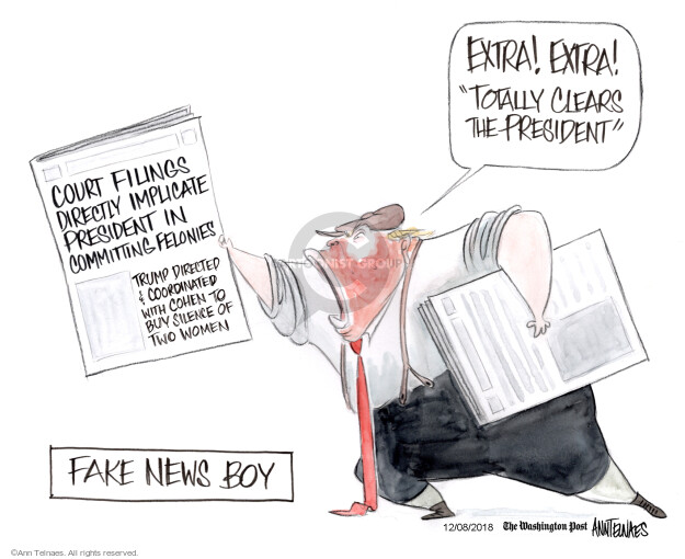 Ann Telnaes  Ann Telnaes' Editorial Cartoons 2018-12-08 news