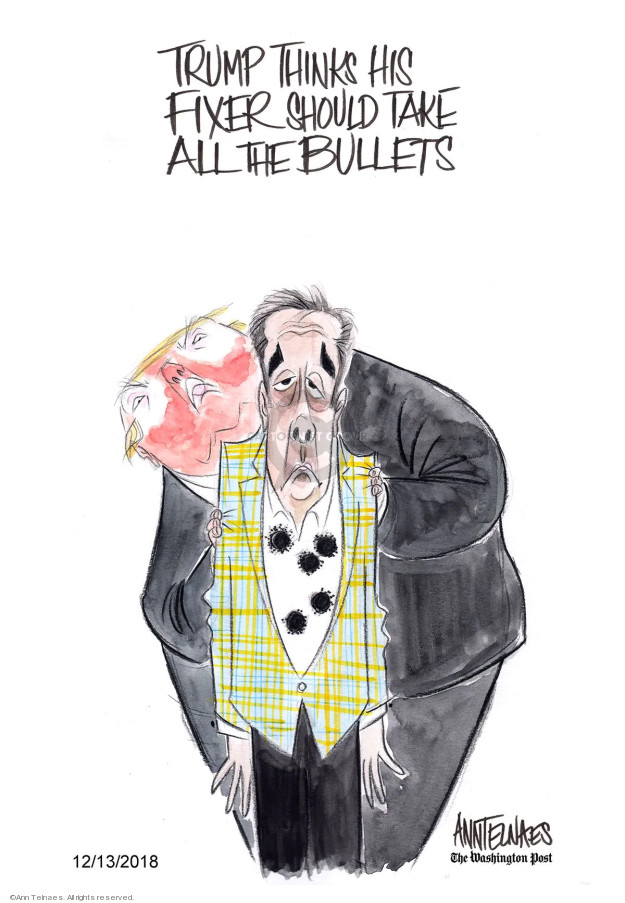 Ann Telnaes  Ann Telnaes' Editorial Cartoons 2018-12-13 lawyer