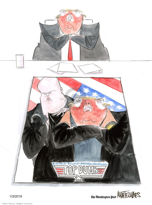 Cartoonist Ann Telnaes  Ann Telnaes' Editorial Cartoons 2019-01-03 gun