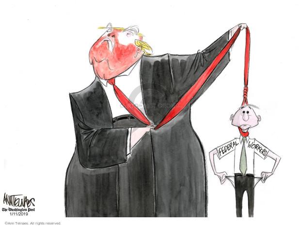Cartoonist Ann Telnaes  Ann Telnaes' Editorial Cartoons 2019-01-11 government shutdown
