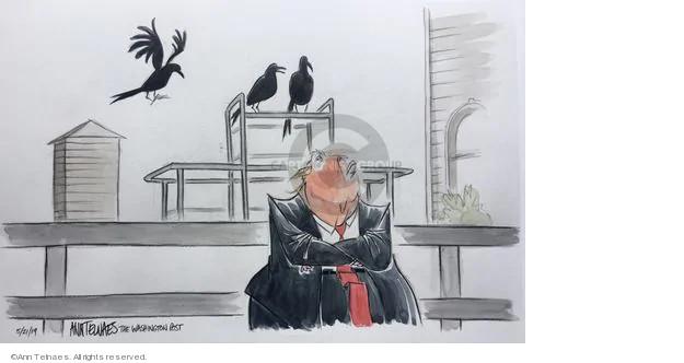Ann Telnaes  Ann Telnaes' Editorial Cartoons 2019-05-21 land