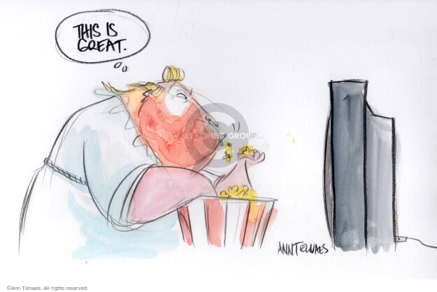 Cartoonist Ann Telnaes  Ann Telnaes' Editorial Cartoons 2019-07-31 2020 election debate