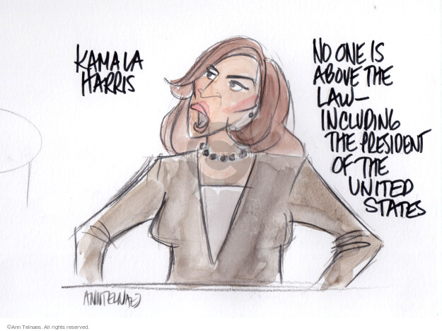 Ann Telnaes  Ann Telnaes' Editorial Cartoons 2019-07-31 democratic debate