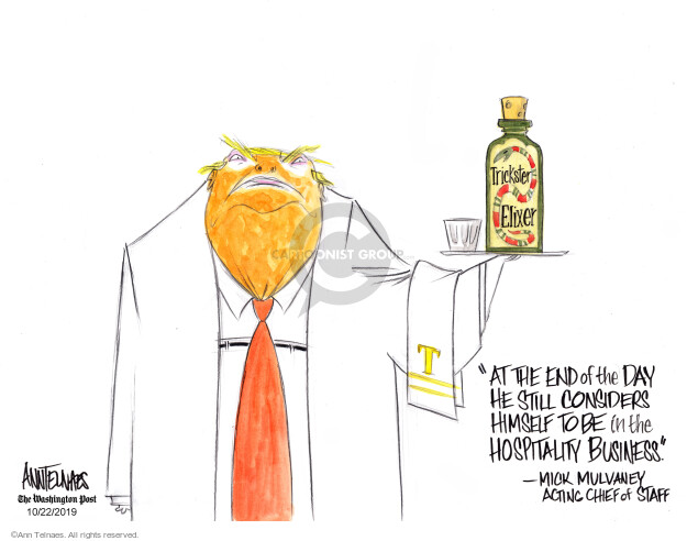 Cartoonist Ann Telnaes  Ann Telnaes' Editorial Cartoons 2019-10-22 2020 election