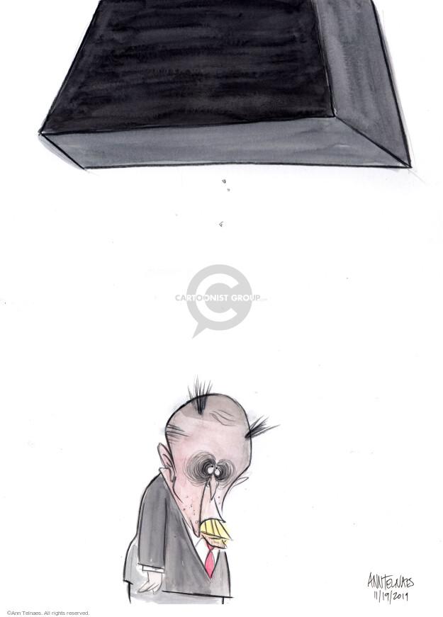 Cartoonist Ann Telnaes  Ann Telnaes' Editorial Cartoons 2019-11-19 congressional investigation
