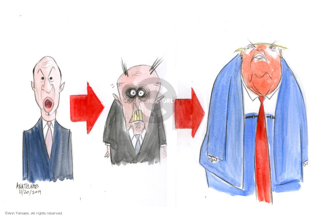 Ann Telnaes  Ann Telnaes' Editorial Cartoons 2019-11-20 election