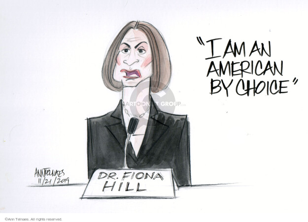Cartoonist Ann Telnaes  Ann Telnaes' Editorial Cartoons 2019-11-21 foreign