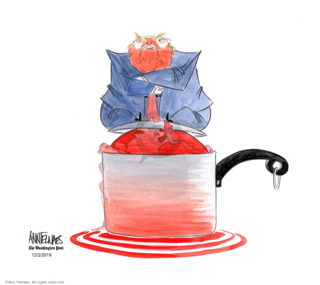 Cartoonist Ann Telnaes  Ann Telnaes' Editorial Cartoons 2019-12-02 presidential administration
