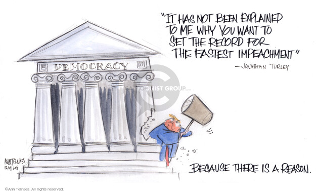 Cartoonist Ann Telnaes  Ann Telnaes' Editorial Cartoons 2019-12-04 presidential administration