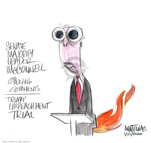 Cartoonist Ann Telnaes  Ann Telnaes' Editorial Cartoons 2020-01-22 impeach