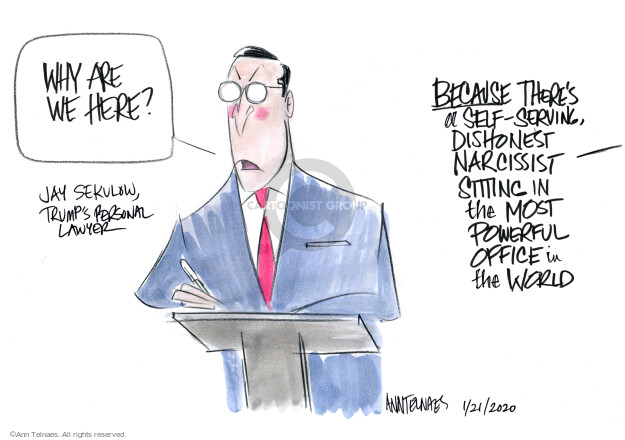 Ann Telnaes  Ann Telnaes' Editorial Cartoons 2020-01-22 legal representation