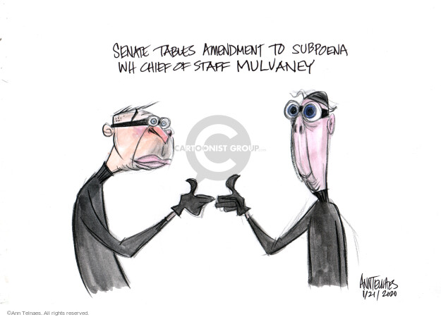 Ann Telnaes  Ann Telnaes' Editorial Cartoons 2020-01-22 house
