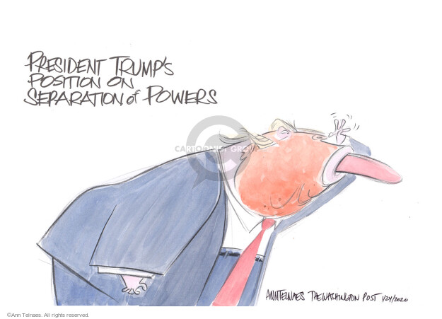 Cartoonist Ann Telnaes  Ann Telnaes' Editorial Cartoons 2020-01-24 presidential administration
