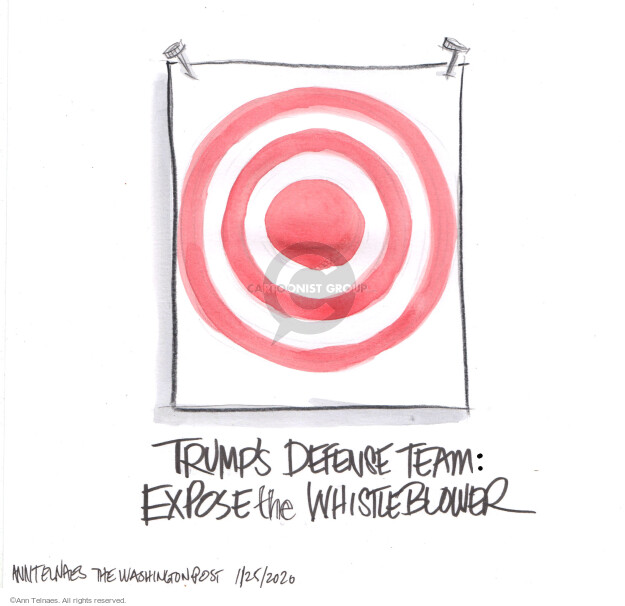 Ann Telnaes  Ann Telnaes' Editorial Cartoons 2020-01-24 legal representation