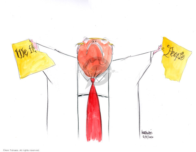 Cartoonist Ann Telnaes  Ann Telnaes' Editorial Cartoons 2020-02-05 presidential administration