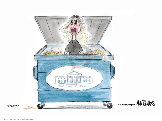 Cartoonist Ann Telnaes  Ann Telnaes' Editorial Cartoons 2020-05-27 cabinet
