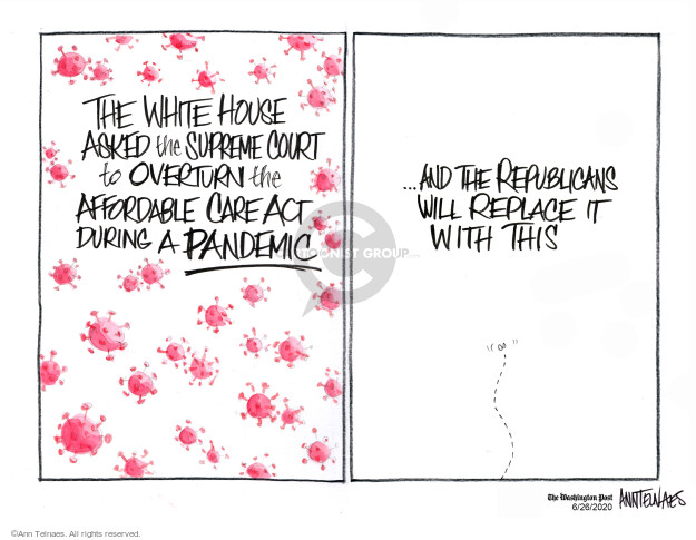 Cartoonist Ann Telnaes  Ann Telnaes' Editorial Cartoons 2020-06-26 house