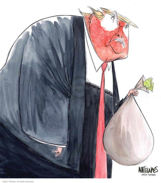 Ann Telnaes  Ann Telnaes' Editorial Cartoons 2020-01-01 2016 Election Donald Trump