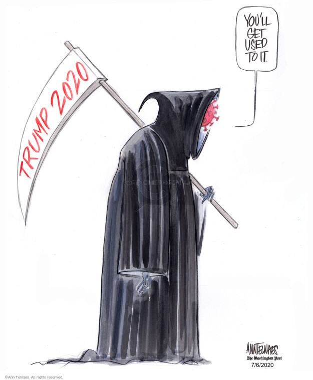 Ann Telnaes  Ann Telnaes' Editorial Cartoons 2020-07-06 presidential administration