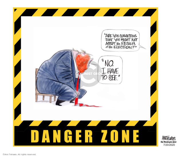 Ann Telnaes  Ann Telnaes' Editorial Cartoons 2020-07-20 2020 election candidate