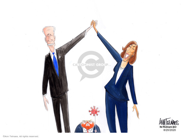 Ann Telnaes  Ann Telnaes' Editorial Cartoons 2020-08-20 democratic candidate