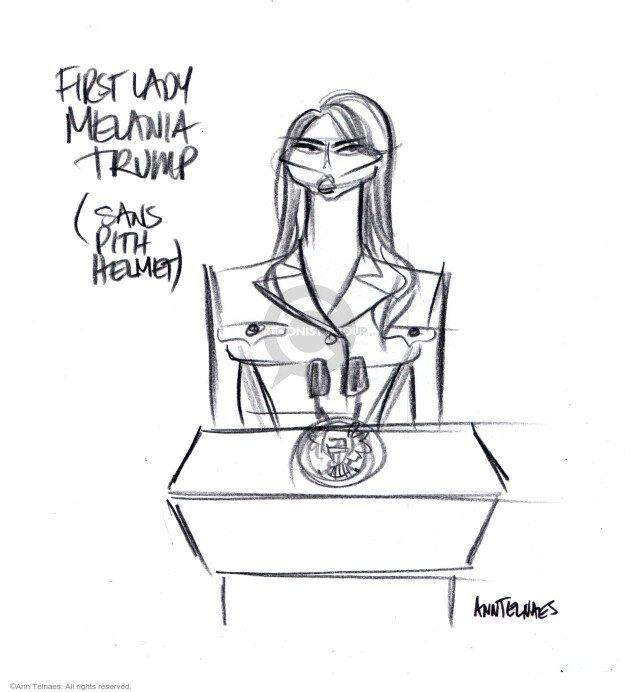Ann Telnaes  Ann Telnaes' Editorial Cartoons 2020-08-25 lady