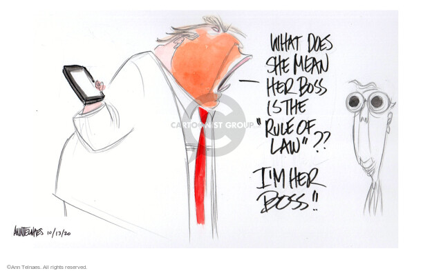 Ann Telnaes  Ann Telnaes' Editorial Cartoons 2020-10-13 senate majority leader